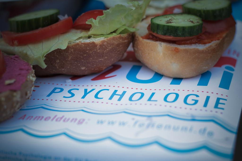 Ferienuni kritische psychologie 2014 for Psychologie nc 2016